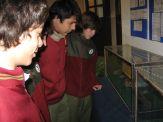 museos-de-ciencias-naturales-3ros-27