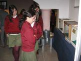 museos-de-ciencias-naturales-3ros-4