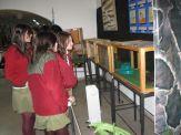 museos-de-ciencias-naturales-3ros-6