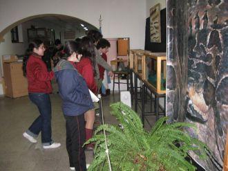 museos-de-ciencias-naturales-3ros-9