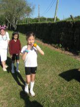 fiesta-primavera-10