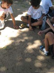 ultimo-dia-de-clases-de-primaria-96