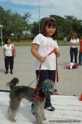 expo-mascotas-2009-162