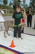 expo-mascotas-2009-171