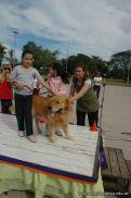 expo-mascotas-2009-172