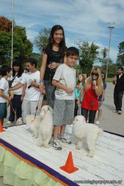 expo-mascotas-2009-173