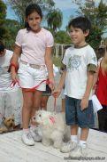 expo-mascotas-2009-176