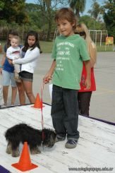 expo-mascotas-2009-180