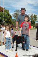 expo-mascotas-2009-183
