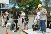 expo-mascotas-2009-192