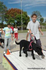 expo-mascotas-2009-258