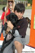expo-mascotas-2009-261
