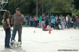expo-mascotas-2009-274