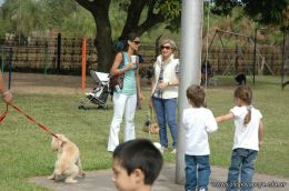 expo-mascotas-2009-276