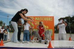 expo-mascotas-2009-287