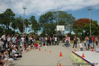 expo-mascotas-2009-291