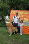 expo-mascotas-2009-32
