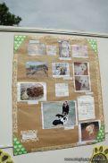 expo-mascotas-2009-329