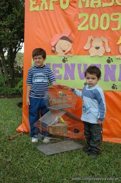 expo-mascotas-2009-44