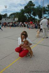 expo-mascotas-2009-90