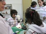 centro-de-parasitologia-30