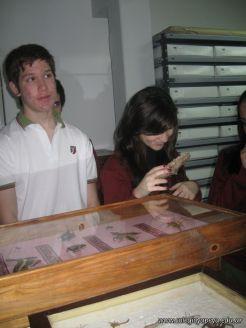 Museo de Cs Naturales 13