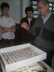 Museo de Cs Naturales 8
