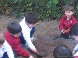 Día de Campo en el Jardín 3