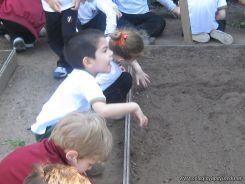 Día de Campo en el Jardín 33