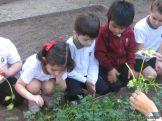Día de Campo en el Jardín 36