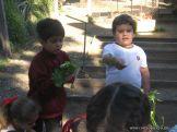 Día de Campo en el Jardín 38