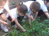 Día de Campo en el Jardín 48