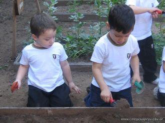Día de Campo en el Jardín 9
