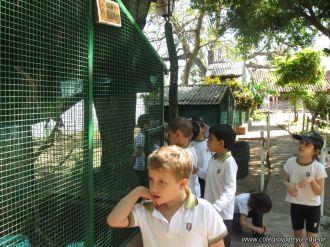 Visita al Zoologico 31
