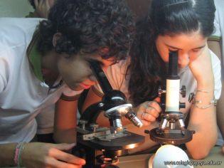 Microscopio 4