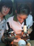 Microscopio 8
