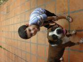 Expo Mascotas Virtual 38