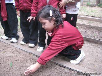 Jardin en la Huerta 110