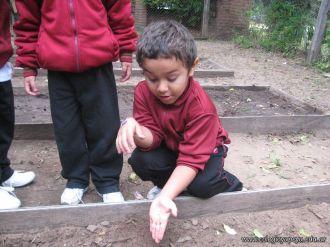 Jardin en la Huerta 115
