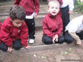 Jardin en la Huerta 120