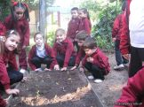 Jardin en la Huerta 136