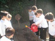 Jardin en la Huerta 164