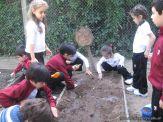 Jardin en la Huerta 185