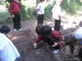 Jardin en la Huerta 186