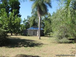 Corrientes Loro Park 114