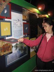Viaje a los Esteros del Ibera 2010 127