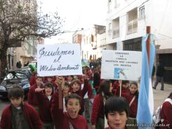 Manifestacion Medio Ambiente 21