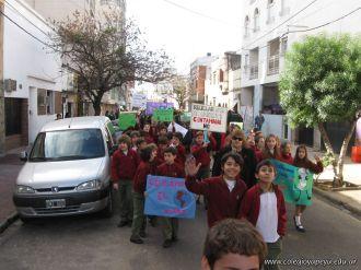 Manifestacion Medio Ambiente 23