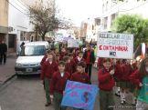 Manifestacion Medio Ambiente 24