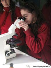 Visita Microbiologia 11